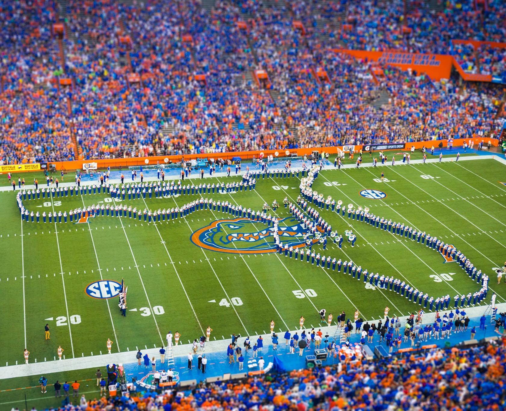 Florida Gators football game attendance